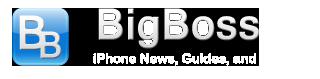 BigBoss Logo