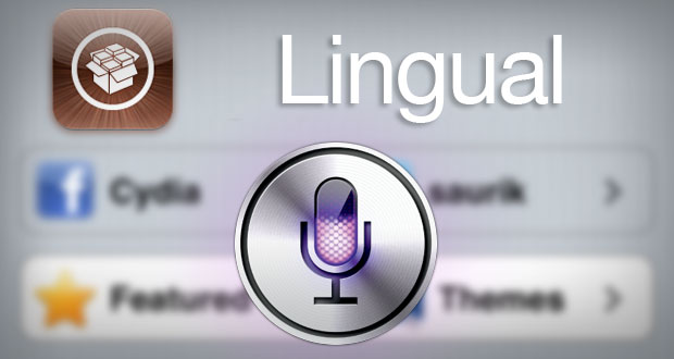 Lingual Assistant Extensions